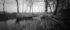 Fallen tree (Rosenthal Photography) Tags: 6x12 ff120 landschaft lochkamera bnw schwarzweiss anderlingen natur asa100 pinhole mittelformat dezember winter städte analog bw rodinal15021°c9min 20180106 fomapan100 zeroimage612b dörfer siedlungen landscape february blackandwhite mediumformat nature trees fields zero image 612b 40mm f158 rodinal 150 epson v800 fallen water ice forst