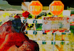 end of the story (Bamboo Barnes - Artist.Com) Tags: digitalart secondlife avatar meilominotaur horn animal sign stop caution biohazard orange green red yellow blue apocalypse flower virtualart bamboobarnes