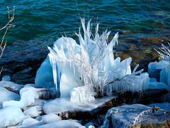Eiszeit am Bodensee (torremundo) Tags: naturaufnahmen motive romanshorn stgallen schweiz bodensee winter eis sonne wasser ufer wind
