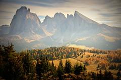 Autumn in the Dolomites (Südtirol, Italy) (armxesde) Tags: pentax ricoh k3 italy italien südtirol altoadige herbst fall autumn alpen alps berg mountain dolomiten dolomites tree baum wolke cloud alpedisiusi seiseralm sassolungo langkofel sassopiatto plattkofel