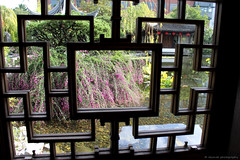 Geometric (elianek) Tags: arquitetura architecture window unitedstates estadosunidos usa eua oregon portland chines jardim garden chinese