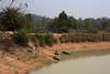 IMG_1749a (sensaos) Tags: india sensaos travel chhattisgarh 2013 asia
