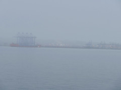 Huge cranes arrive at Port of Tacoma (Liz Satter) Tags: tacoma portoftacoma cranes panamex cargoship coolcargo cargo commencementbay pugetsound snow fog piercecounty southsound wa pnw pacificnorthwest northwest internationaltrade port253 northwestseaportalliance nwsacranes