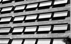 Frankfurt (Thorsten Fleige) Tags: monochrom schwarzweiss nikonf90 berggerpancro400 spurufp bw blackandwhite mono frankfurtammain