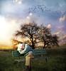 Empty spaces (jaci XIII) Tags: pessoa homem velho idoso solidão árvore paisagem banco descanso person man old solitude tree landscape bench rest