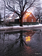 Rainy winter morning in Montreal (Hovig) Tags: montreal winter rainy