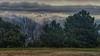 El invierno está aquí (pedroramfra91) Tags: invierno winter naturaleza nature exteriores outdoors arboles trees montañas mountains nieve snow paisaje landscape