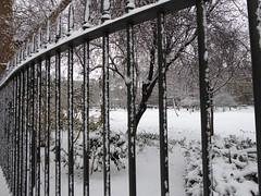 Snowy Gordon Square (Richard and Gill) Tags: london bloomsbury ucl universitycollegelondon gordonsquare