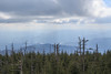 Clingmans Dome, Great Smoky Mountains National Park, North Carolina / Tennessee (Mike Sirotin) Tags: landscape tenn travelphotography nature northcarolina tennessee greatsmokymountainsnationalpark nc trees mountians travel landscapephotography tn nationalpark appalachia clouds naturephotography