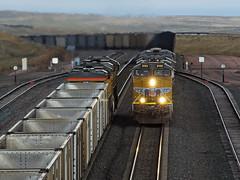 UP8155MeetDouglasWY10-1-17 (railohio) Tags: up trains douglas wyoming d7000 100117 es44ac coal powderriverbasin meet