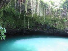 SAMOA (22) (stevefenech) Tags: oceania south pacific islands adventure travel backpacking stephen fenech fennock fun samoa