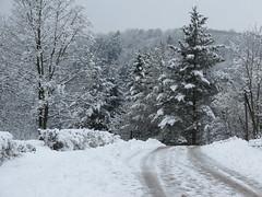 Eintagswinter (germancute) Tags: outdoor nature winter landscape landschaft thuringia thüringen