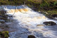Hardcastle Crag (Kingsley_Allison) Tags: westyorkshire hebdenbridge water nikond7200 nikon beck national trust d7200 hardcastlecrag gibsonmill nationaltrust
