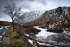 A River, a Tree and some Snowy Mountains (SAWPHOT0) Tags: 2018 landscape scotland glencoe snow waterfall winter river flow water tree moody clouds scottishhighlands glenetive