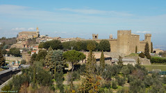 Montalcino in Val d'Orcia (SI) (Darea62) Tags: unesco valdorcia village tuscany castle montalcino toscana borgo tower trees fortress wall history ancient