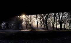 Sunrise under the highway (aris.sfakianos) Tags: sunrise manchester england uk highway graffity sun trees light white black contrast urban city pavement