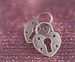 Do you hold the key to my heart? (Through Serena's Lens) Tags: stilllife smileonsaturday heartshaped heart locks metal bokeh dof tistheseason 7dwf pastfeaturedwinner