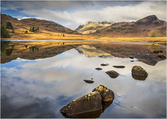 Blea Tarn (beninfreo) Tags: bleatarn lakedistrict ice cold winter morning reflections reflection cloud langdalepikes langdale frozen water cloudtogroundimages uk gb britain landscape canon canon5d3 1740mml 1740mm 2018 mirror mirrorimage