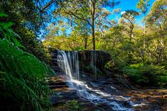 Falls (deepans = Sandeep) Tags: visitnsw bluemountains wentworthfalls nsw australia ilovensw