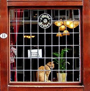 Amsterdam Pub Window