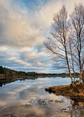 Vormedal, Norway (Vest der ute) Tags: xt2 norway rogaland karmøy water waterscape landscape lake reflections mirror trees tree grass sky clouds fav25 fav200