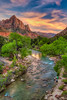 The Watchman Sunset - Zion National Park (jodell628) Tags: zion national park watchman sunset utah virgin river