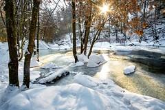 golden winter (Andreas.W.) Tags: aisttal mühlviertel wintermorning winterlandscape feldaisttal sunrays sunlight samyang 12mm f20