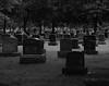 A Grave Situation (John Neziol) Tags: jrneziolphotography portrait landscape grass outdoor graveyard graves tree trees headstone headstones mounthopecemetery brantford beautiful blackwhite nikon monochrome nikondslr nikoncamera nikond80 naturallight granite