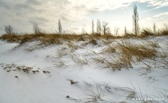 Morning Walk (mswan777) Tags: beach dune shore coast morning light sunrise sky cloud scenic winter michigan outdoor nature hike grass nikon d5100 nikkor 1855mm