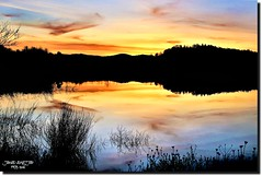SUNSET-I (jawadn_99) Tags: sutherlin oregon tranquil quiet calm sober static peaceful usa park lake birds water trees reflections interrestingness clouds fallseason birdswaching explore panorama suset bond
