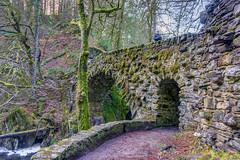 The Hermitage, Dunkeld (Bruscot Photography) Tags: vegetation autumn moss natural foliage bridge highlands nature water western sony perth noperson growth trees united wild outdoors tree uk rivers hermitage trail architecture park kingdom landscape fall river stone path tranquil scotland cascade medieval rock dunkeld landmark stream rapid outdoor bruscot historic 2018 rocks waterfall leaves wood idyllic scenery flow travel forest scenic europe pristine green pleasure scottish photography mountain