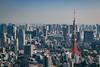 Tokyo Tower (21mapple) Tags: tokyo tower city cityscape sky sigma skyscraper skyline building smog mist japan