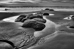 Kalaloch #19 Olympic National Park, Washington State (grburns09) Tags: beach olympicnationalpark d200 blackandwhite monochrome