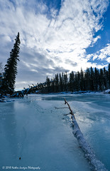 Sheep River (Witty nickname) Tags: kananaskiscountry kananaskis frozen river water sheeprivervalley sheepriver ice trees 2018 wideangle