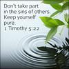 1 Timothy 5:22 (joshtinpowers) Tags: timothy bible scripture
