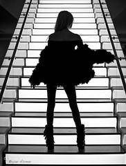 obscurekitten@ Leica Boutique Beverly Hills 4 Neal Preston Exhibition (bryanasmar) Tags: ngc leica store la boutique neal preston exhibit monochrome m246 f1 50mm