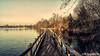 Lac de la Gravière Brock (Lцdо\/іс) Tags: lac de la gravière brock oupeye hermallesousargenteau lцdоіс belgique belgium belgie visé liège province wallonie