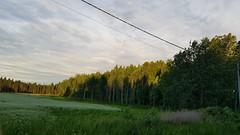 Randoällärit: windy trees (hugovk) Tags: randoalleycat randoällärit cycling randoälläritwindytrees windy trees otalampi uusimaa finland geo:region=uusimaa geo:country=finland geo:locality=otalampi geo:county=helsingin helsingin camera:model=smg950f exif:isospeed=40 camera:make=samsung exif:flash=noflash exif:orientation=rotate180 exif:exposure=1604 meta:exif=1516526680 exif:aperture=17 exif:exposurebias=0 exif:focallength=42mm hvk cameraphone samsung galaxys8 samsungs8 s8 samsunggalaxys8 samsungsmg950f hugovk smg950f summer 2017 kesä june