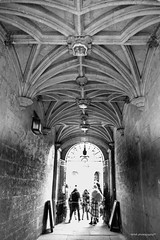 R0018819 (usagi0915) Tags: grd uk snap england grdiv ricoh street travel london