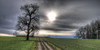 Winternachmittag (stega60) Tags: landschaft landscape sonne sun licht light baum tree winter wolken clouds himmel sky weg way nachmittag afternoon stega60 hdr stiched panorama