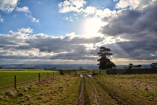 Muddy path - Bredon Hill (explored)