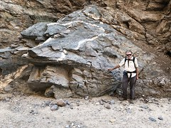 2018-02-15 GOPS Geology Hike (118) (MadeIn1953) Tags: 2018 201802 20180215 greatoutdoorsgo go gops greatoutdoorspalmspringsgops hiking california coachellavalley riversidecounty meccahills paintedcanyon laddercanyon geologywalk joemigliore
