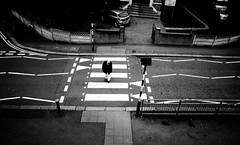 crossing (futyesz) Tags: ricoh grd bw blackandwhite street london crossing road