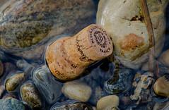 Bourgogne on the beach (frankmh) Tags: cork bourgogne sparklingwine beach water pebble hittarp skåne sweden outdoor