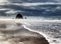 Stormy Beach (Gary Grossman) Tags: moody rain wet beach pacific ocean shore sand waves water garygrossmanphotography coast winter storm reflection clouds pacificnorthwest pacificocean oregon cannonbeach haystackrock seastack seascape landscape nature natural stormy