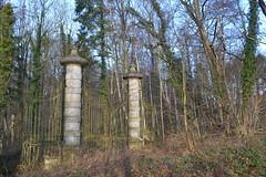 Zevenbergenbos, Ranst (Erf-goed.be) Tags: zevenbergenbos bosvanranst bos ranst archeonet geotagged geo:lon=45565 geo:lat=511984 antwerpen