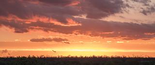 Road trip - sunset near Bateleur Bush Camp, Kruger National Park