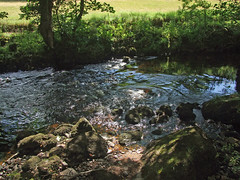 River Teign with wooded banks, just upstream from Teign Gorge (Philip_Goddard) Tags: europe unitedkingdom britain british britishisles greatbritain uk england southwestengland devon dartmoornationalpark drewsteignton teignvalley teigngorge riverteign river shaded