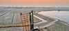 20180221-0748-52 (Don Oppedijk) Tags: haarlem noordholland nederland nl windmill molenplas ringvaart molenwiek aalscholver cffaa cormorant