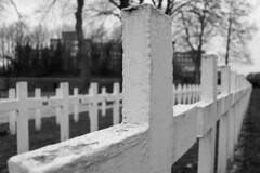 Enclos National des Fusillés (Liège 2018) (LiveFromLiege) Tags: liège luik wallonie belgique architecture liege lüttich liegi lieja belgium europe city visitezliège visitliege urban belgien belgie belgio リエージュ льеж enclos national des fusillés enclosnationaldesfusillés enclosdesfusillés citadelle citadelledelièege resistance verzet armée wwii ww2 secondeguerremondiale noir et blanc black white noiretblanc noirblanc blackandwhite blackwhite whiteblack photography